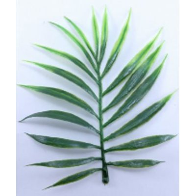 W-13 Добавка букетная Лист пальмы. 13.5 см. 100 гр./уп.(≈ 43 шт.)